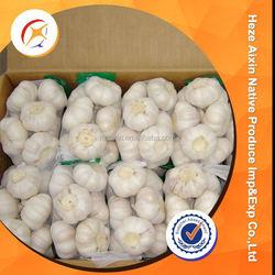 Chinese Fresh Garlic Products