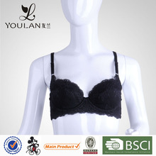 Factory Price High Quality Embroided Padded Big Size Bra