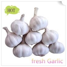 2015 new fresh white garlic Shandong origin