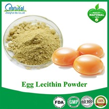 Hot Sale Dietary Complementary Egg Lecithin Powder