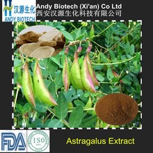 100% Natural High Quality Polysaccharides 50% Astragalus Root Extract Powder