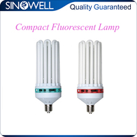 China Top 3 Manufacturer Hydroponics CFL Light Bulb with Competitive Price