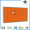Express parcel delivery locker