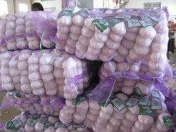 Chinese Fresh Purple Garlic 2015 Crop