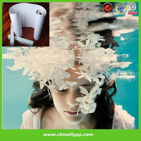 A4, roll photo paper for digital printing, display photo paper for minilab