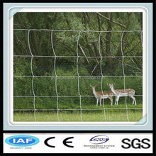 Hot dipped galvanized wire fencing horses