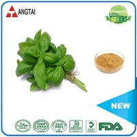 Factory supply pure holy basil extract with competetive price
