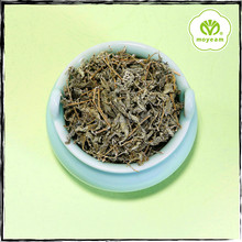 Chinese Authentic Green Tea Contains Rich Nutritional Ingredients