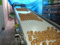 full automatic custard cake production line made in china
