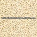 etíope de tipo humera semillas de sésamo