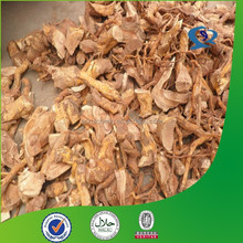 tripterygium wilfordii root extract powder