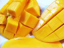 Top quality mango slice/ Low price mango slice/dried mango