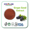 Hot selling Whitening skincare grape seed extract powder Proanthocyanidin