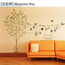 Tree Art Wall Paper Fashion Removable Photo frame Family Tree 3D Vinyl Home Wall Sticker For decor