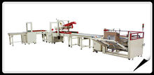 CS10 Carton Packing Machine