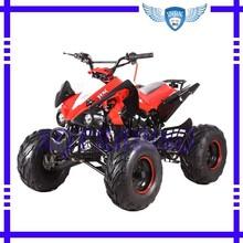 125CC Mini ATV XQ125D