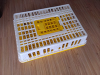 best quality best price broiler chicken transport crate cage box coop