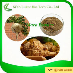 ISO Certified, FDA Factory Registration maca extract in fine brown-yellow powder