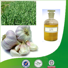 100% Natural and pure garlic extract garlic oil allicin