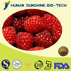 Nature Raspberry fruit exract powder for Weight Loss