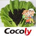 cocoly pera utiliza productos químicos usd de fertilizantes en la agricultura