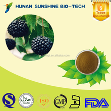 100% Natural Siberian Ginseng Extract 0.8%/1.2% Eleutheroside B+E
