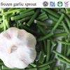 buy chinese top quality frozen vegetables frozen garlic sprout