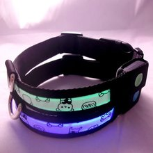 2012 Popular and HOT seling Led dog collar