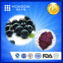 specialized product pure spray drying fruit extract powder acai berry juice powder