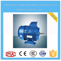 Y2 Series (IP54) Three Phase Asynchronous 110 Volt Electric Motor