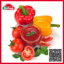2015 top quality price canned tomato paste
