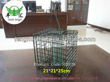 hanging plastic tube bird feeder FHBF01