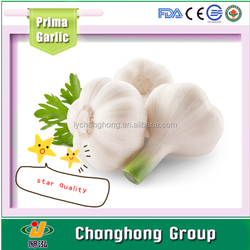 2015 new crop fresh normal white garlic for sale