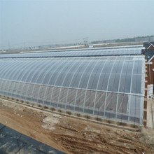 Low cost 15 years warranty double wall plastic polycarbonate agriculture greenhouse for sale