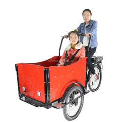 CE approved holland 3 wheel electric tricycle low cost cargo bike price