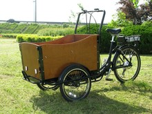 2015 Dutch Hot cheap three wheel electric car/bike/tricycle/trike/bicycle for sale