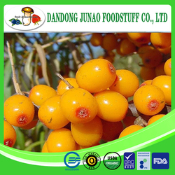 High quality fresh frozen wild sea buckthorn for juice