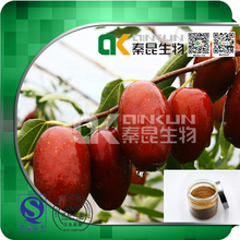 Factory Supply 100% Natural Jujube Extract Fruit Extract