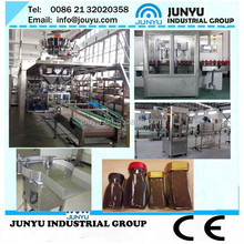 automatic Coconut Sugar Particle Packing Machine|Sugar granule Packaging and filling Machine