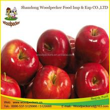Wholesale China Honey Fuji Apple