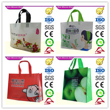 High Quality New Fashion Recycled Pet Bottles Non Woven Bag Manufacturer from China