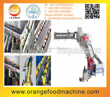 Fresh vegetable & fruit washing machine & sorting machine with the factory price