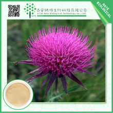 100% Natural Silybum marianum extract Silybum marianum powder 80% Silymarin UV herb extract for liver