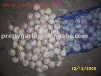 Jiangsu Garlic From China/Canada Garlic