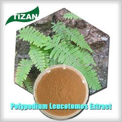 Best Price Polypodium Leucotomos Extract 4:1