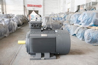 300 hp elektrik motoru 400 hz motor