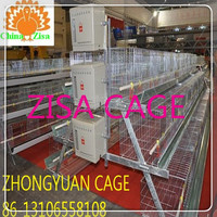 120birds layer egg cage chicken farm layer cage in zimbabwei for sale