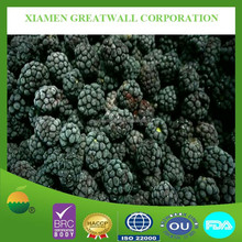 Offer 2015 new crop frozen blackberry