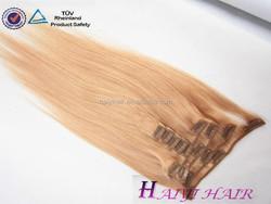 Top Remy Virgin Hair Blonde Hair Bun Pieces