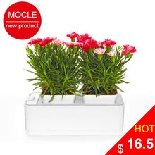 Smart Mini Garden new products agents wanted in Hungary